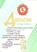 Диплом Кіровоградської обласної громадської організації 'Десятдет', 2008