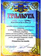 Грамота Кіровоградської обласної організації інвалідів ВОІ СОІУ, 2007